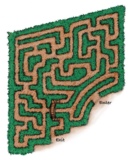 corn-maze-150
